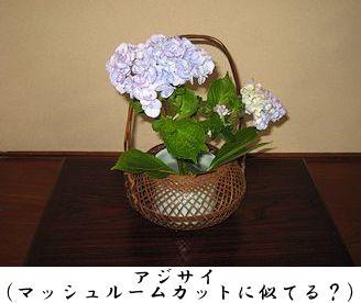 1027_1.jpg