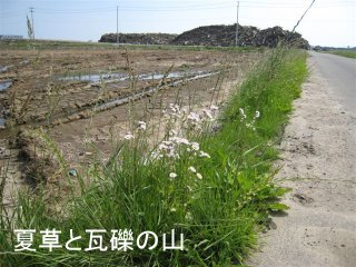 20110701-3.JPG